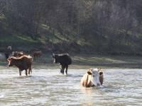 Сплав по реке Сакмара с 29 апреля по 6 мая 2018 года - КСП Спутник