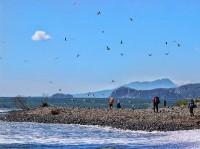 Поход по 3 Курильским островам Кунашир, Шикотан и Итуруп - КСП Спутник